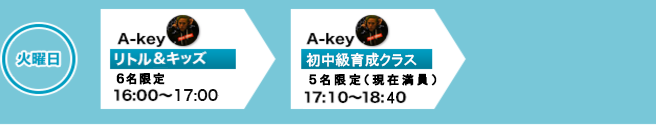 1コイン初回体験レッスン500円